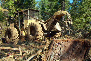 Alliance expands forestry tire line-up